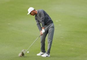 Jack Singh Brar Golf